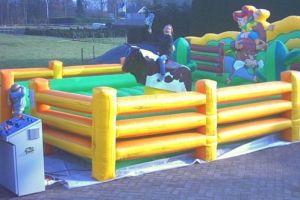 Rodeostier huren in België: heel veel lol!